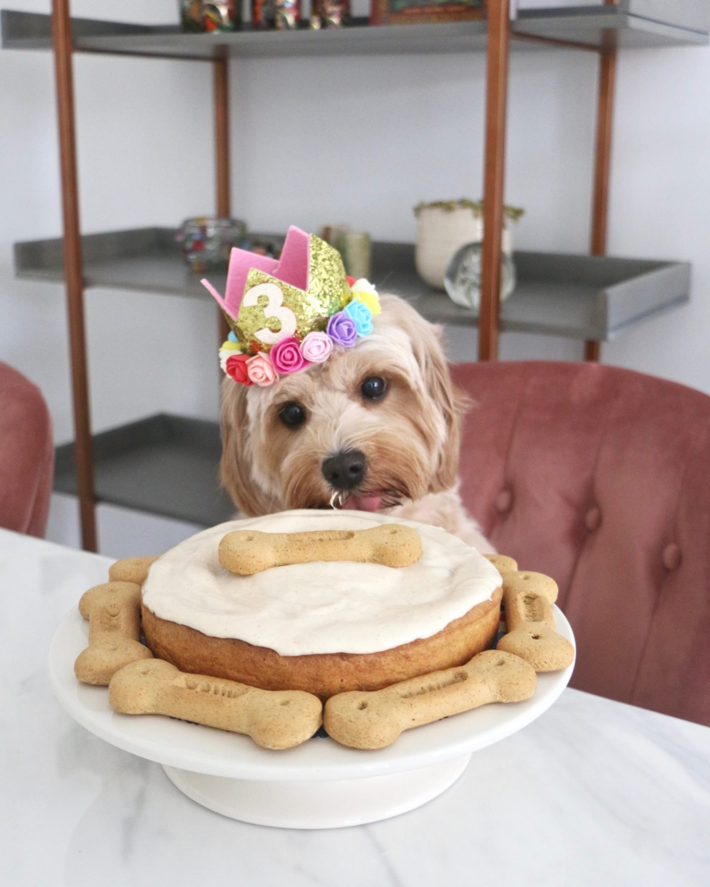 Wondrous Dog Birthday Cake Recipe Banana Peanut Butter Funny Birthday Cards Online Chimdamsfinfo