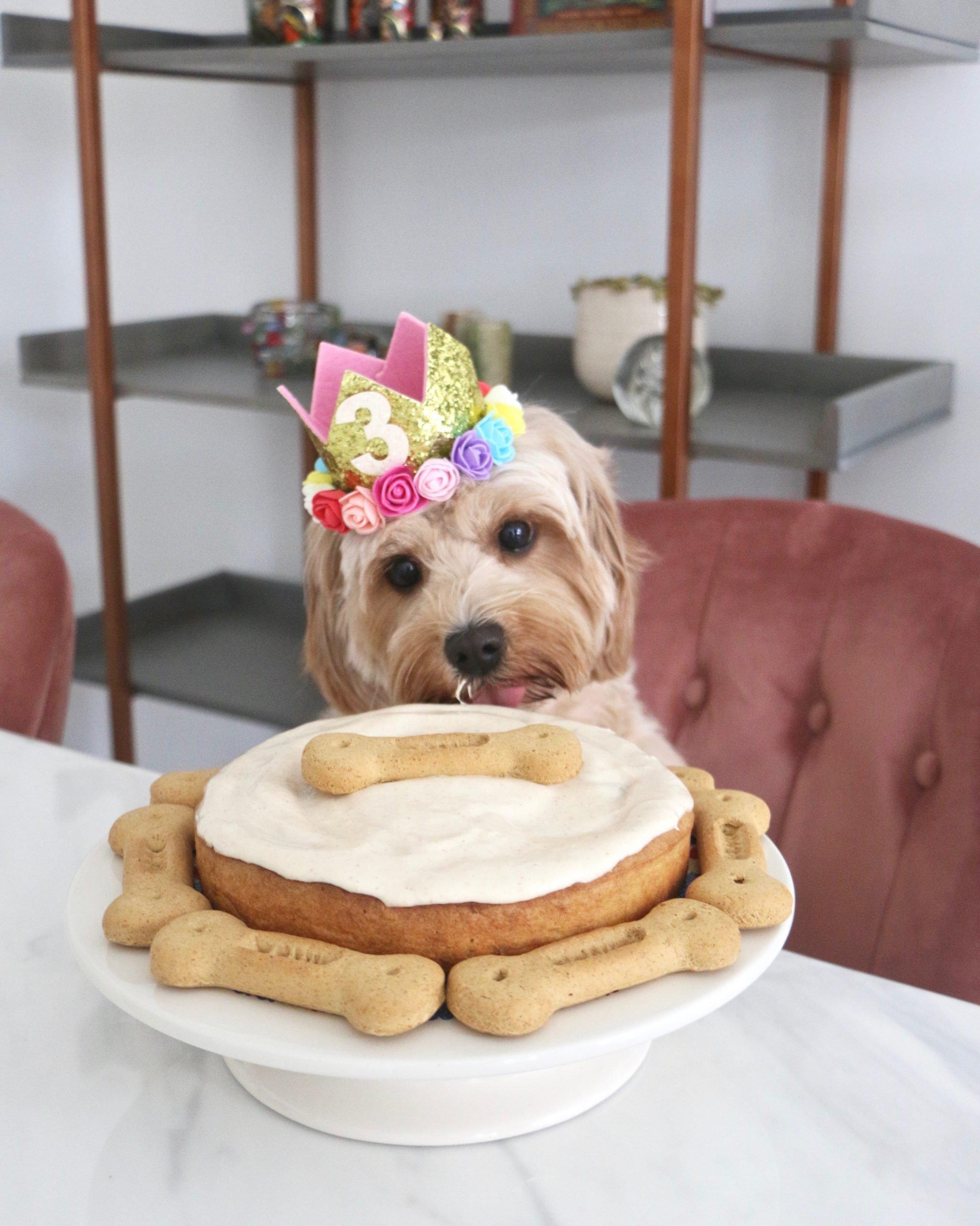 Superb Dog Birthday Cake Recipe Banana Peanut Butter Funny Birthday Cards Online Hendilapandamsfinfo